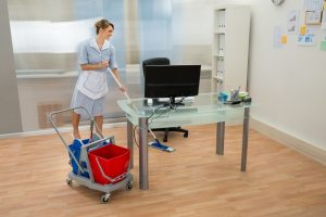 professional janitorial services