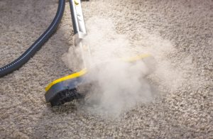 steam clean the carpet